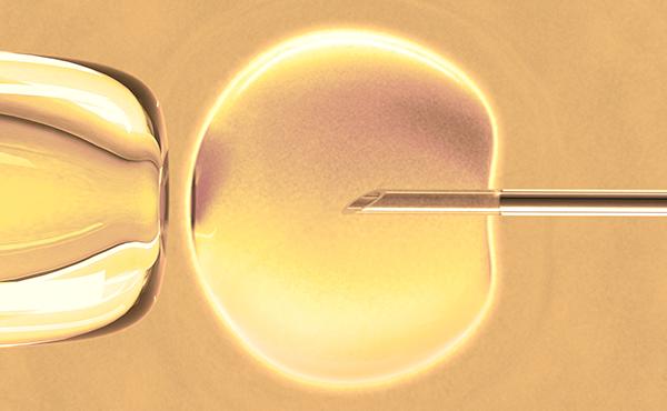 Reproducción humana asistida